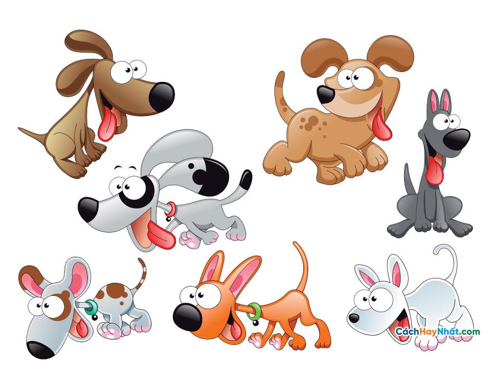 Những con chó dễ thương - cute dogs