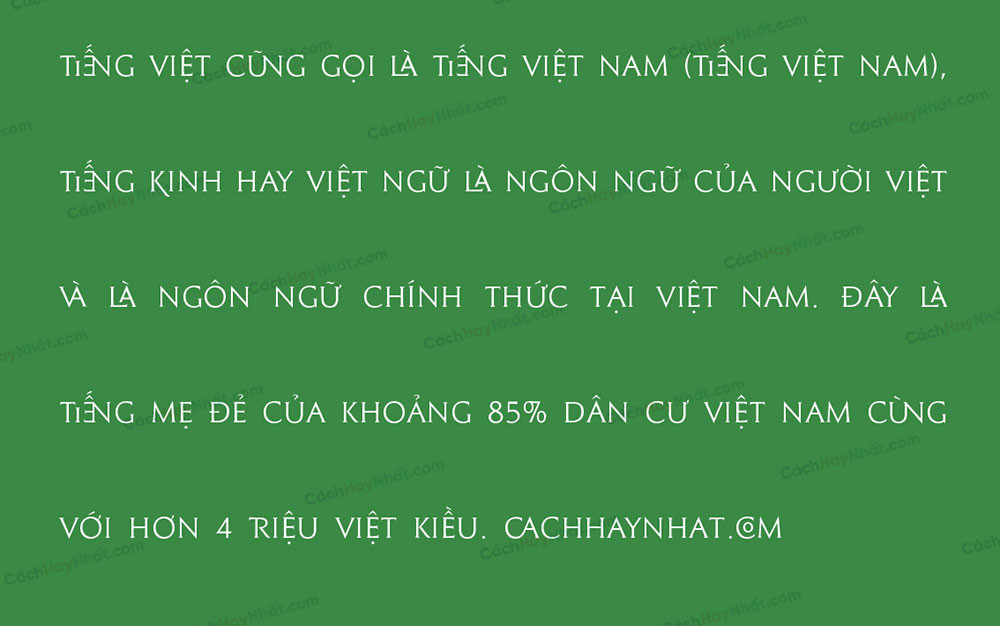đoan văn mô tả font SVN Le Beaune New Việt hóa