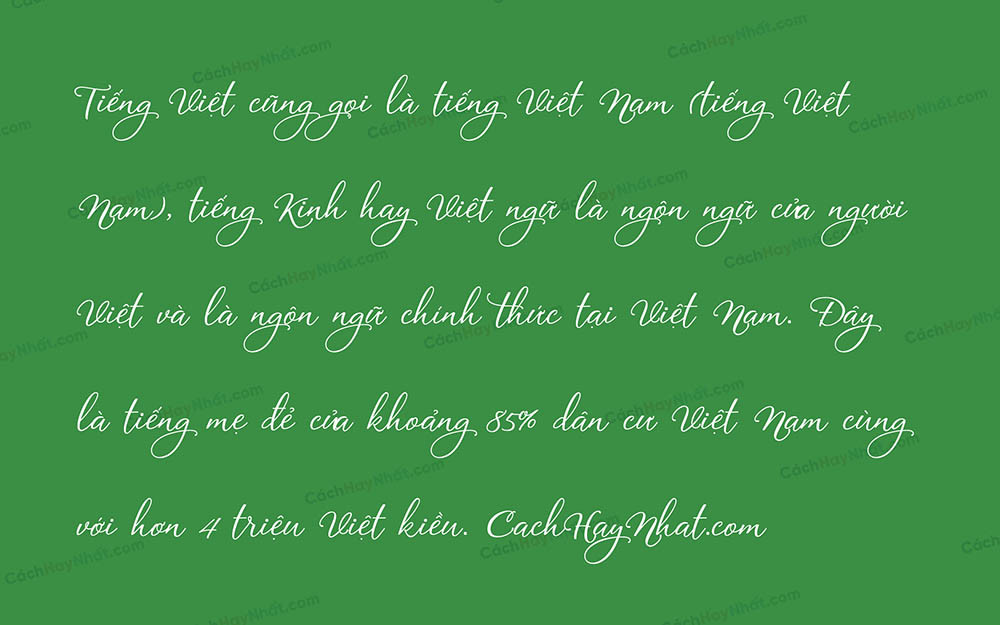 Font VL Agile Script Calligraphy Việt Hóa