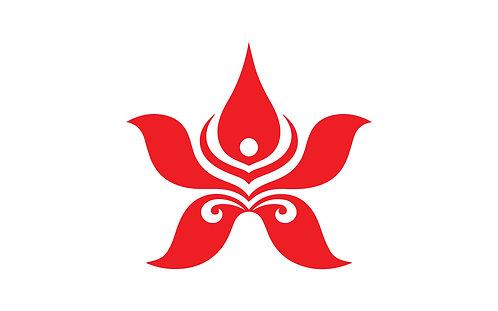 Logo Hong Kong Airlines Vector Full Định Dạng CDR AI PDF EPS PNG