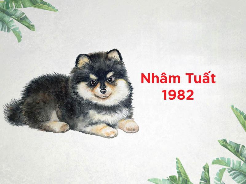 nhâm tuất 1982