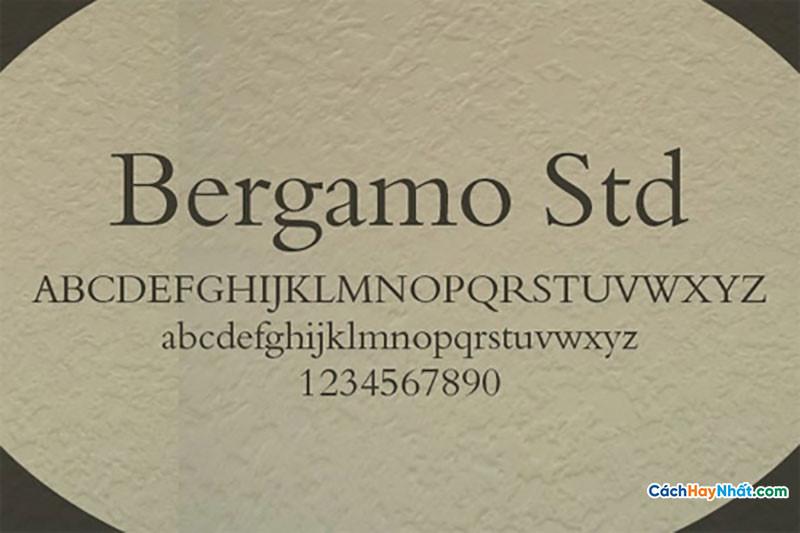 Download Free Font Bergamo Std