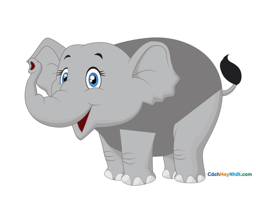 con voi dễ thương - cute elephant