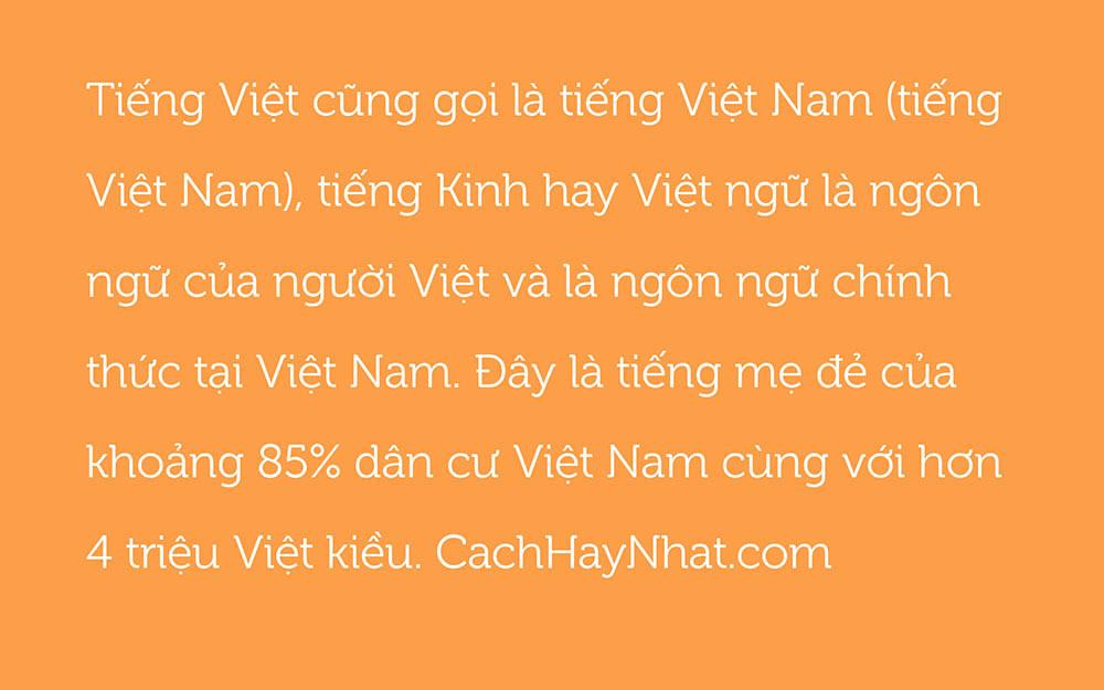 SVN-Museo Slab Regular Việt Hóa
