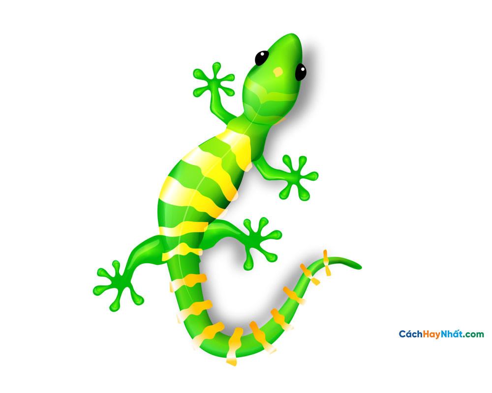 con thạch sùng - geckos