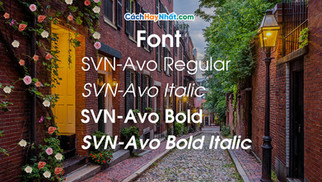 Download Font SVN-Avo Regular Italic Bold Việt Hóa
