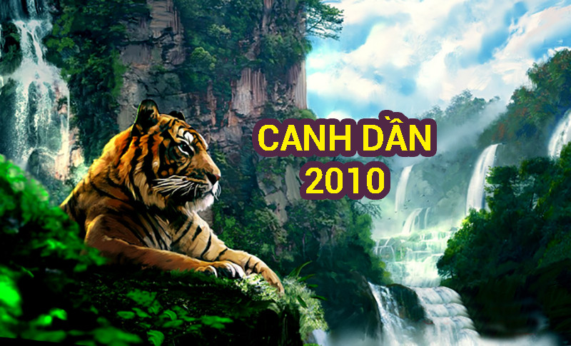 Canh Dần 2010