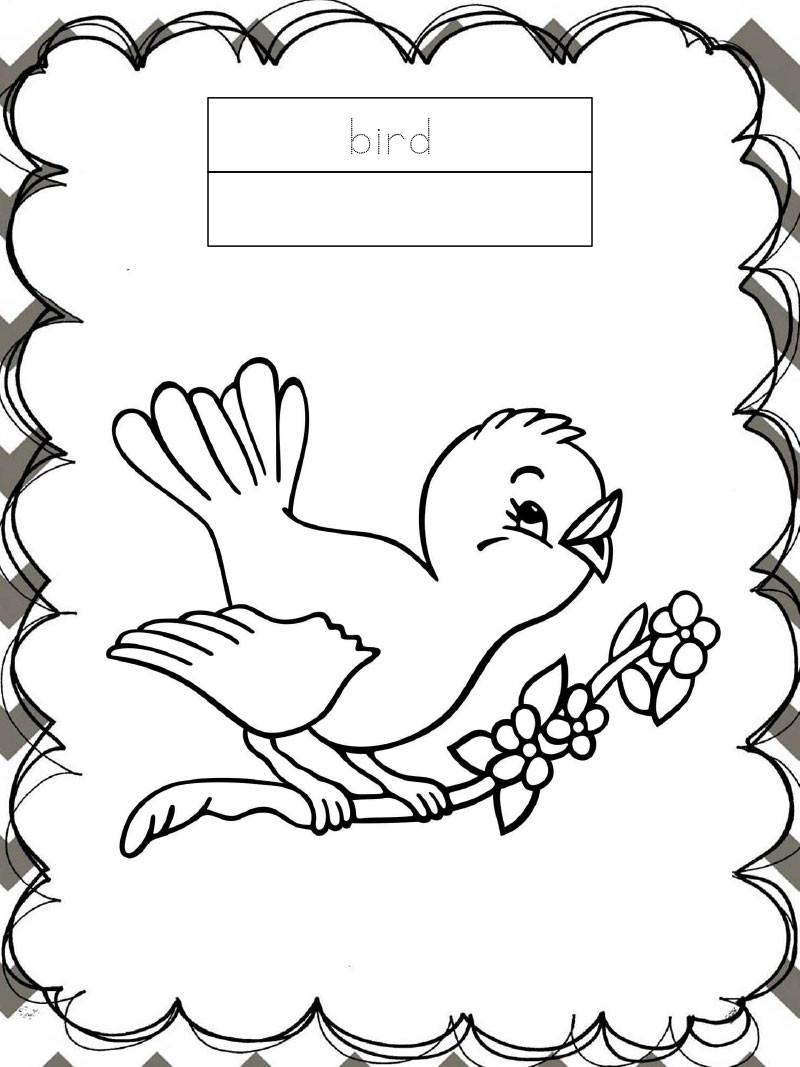 Tập tô màu động vật cho bé - con chim - bird