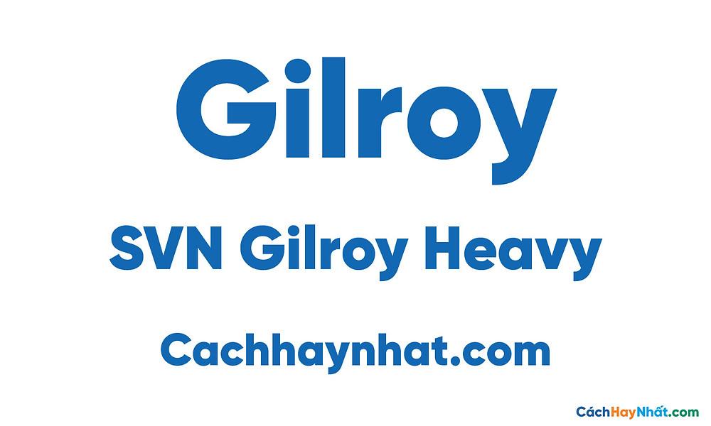 SVN Gilroy Heavy