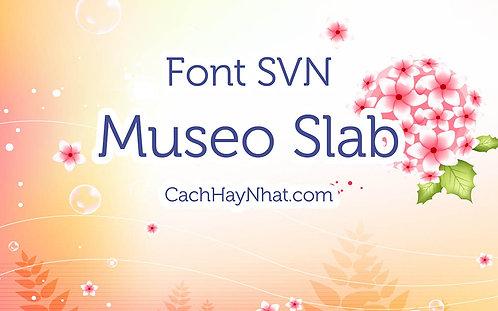 Download Font SVN-Museo Slab Regular Việt Hóa