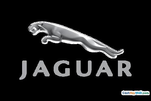 Logo Jaguar 3D Vector PDF PNG