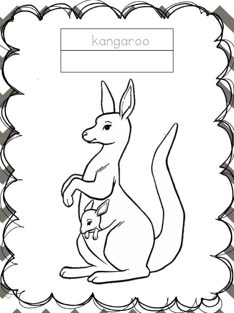 Tập tô màu động vật cho bé - con chuột túi - kangaroo