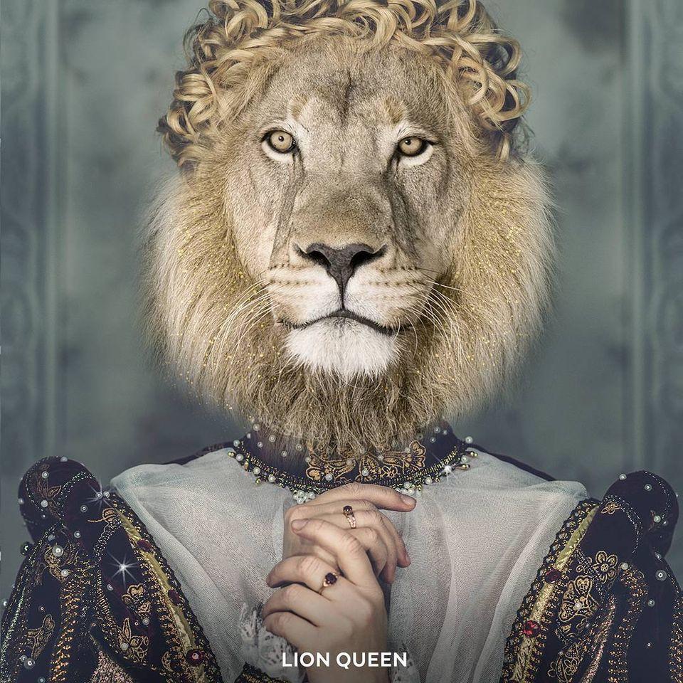 Mặt sư tử mohamad kaaki được chụp ảnh vui nhộn