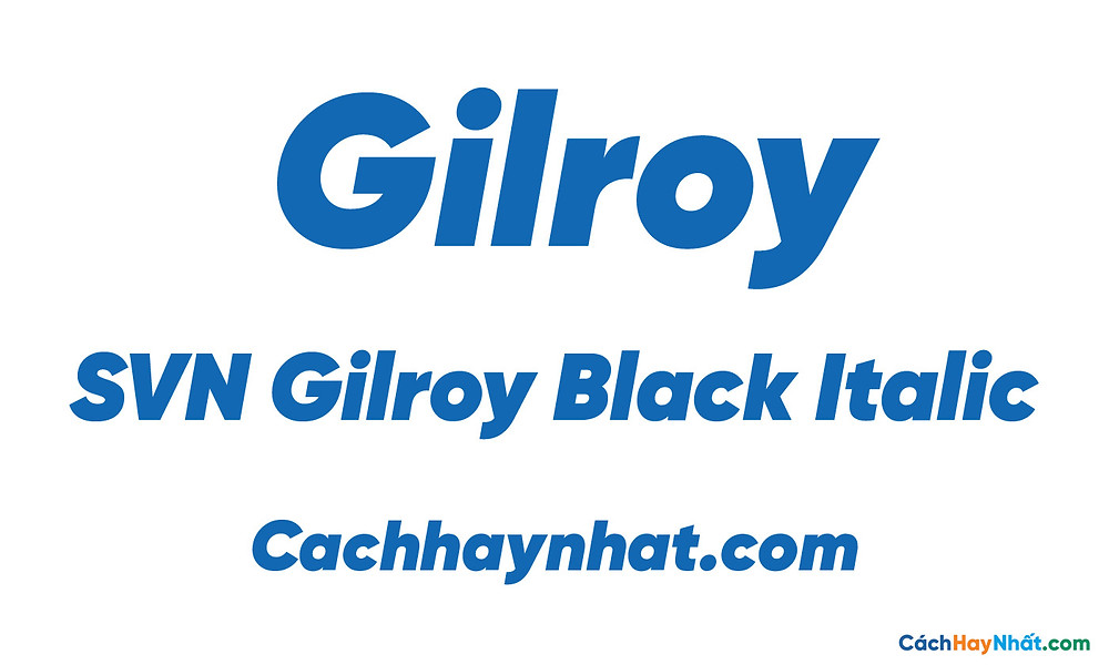 SVN Gilroy Black Italic