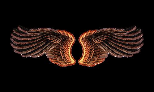 Đôi Cánh Chim PNG PSD Photoshop 05