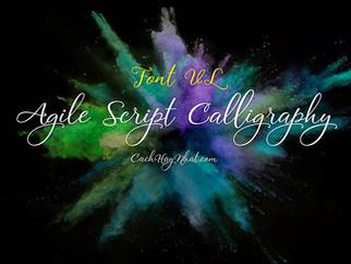 Download Font VL Agile Script Calligraphy Việt Hóa