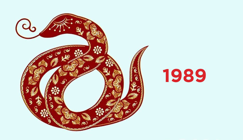 Tỷ Tỵ 1989