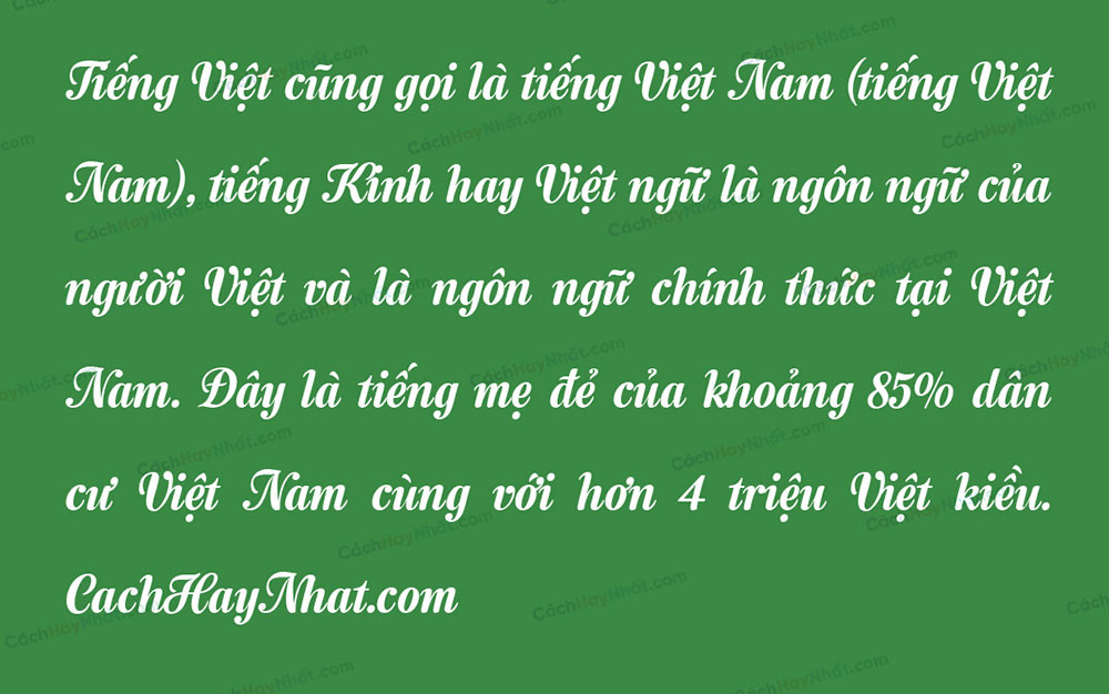 đoạn văn bản font VNF Semilla Việt hóa