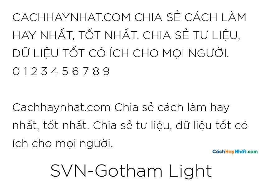 SVN-Gotham Light