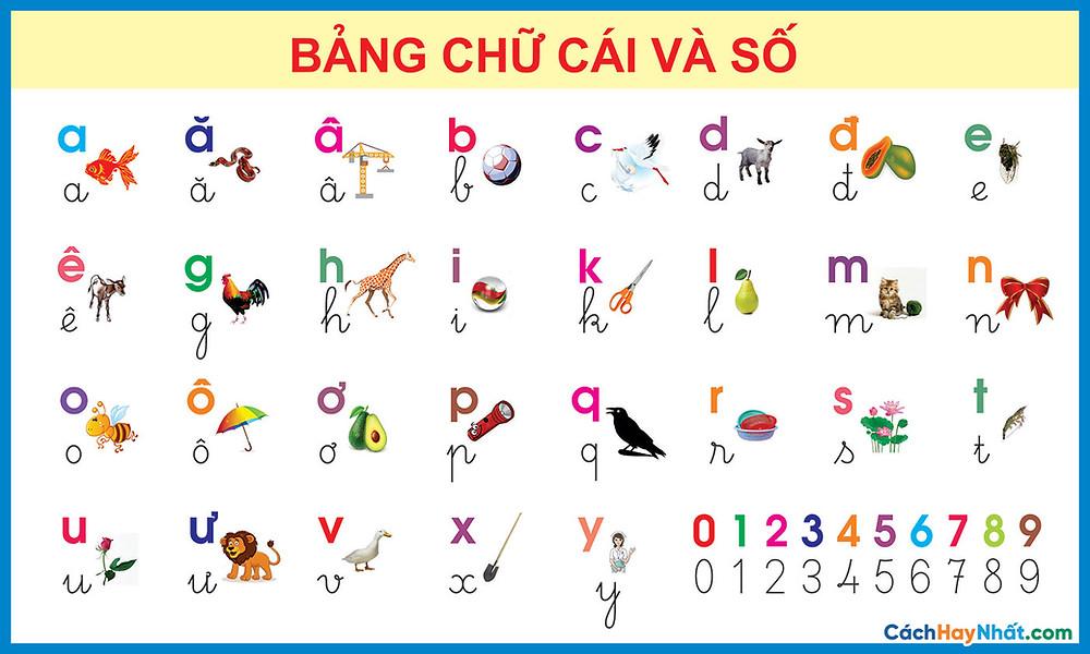 Bảng Chữ Cái Tiếng Việt Và Số Vector Corel