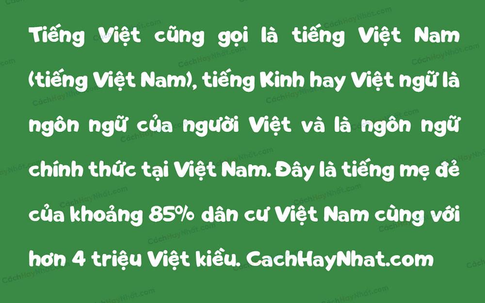 đoạn văn bản font SVN ToySans Việt hóa