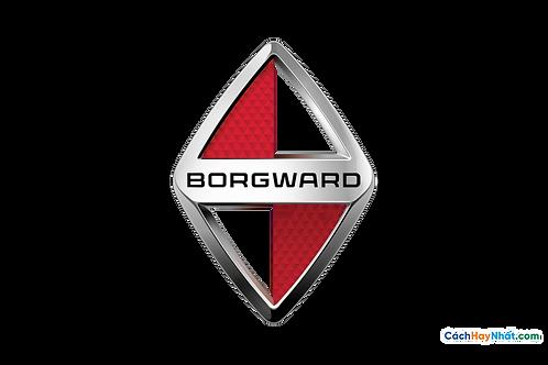 Logo Borgward 3D Vector PDF PNG