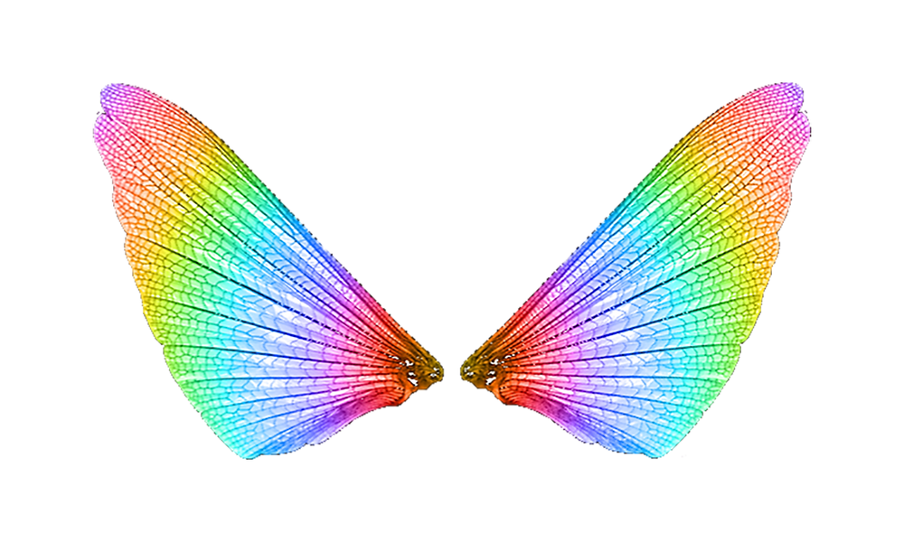 đôi cánh bướm