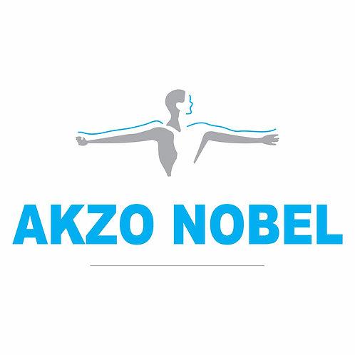 Akzo Nobel Logo Vector CDR Corel