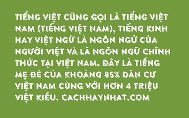 Font SVN-Brandon Printed Shadow Việt Hóa