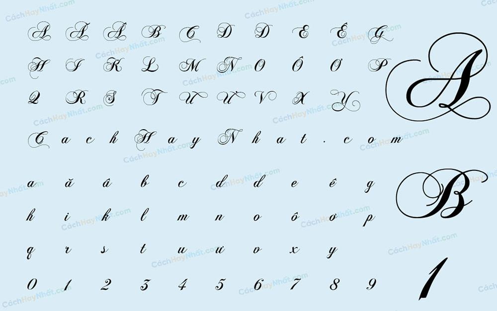 bảng chữ cái mô tả font VNF Chops Normal Việt hóa