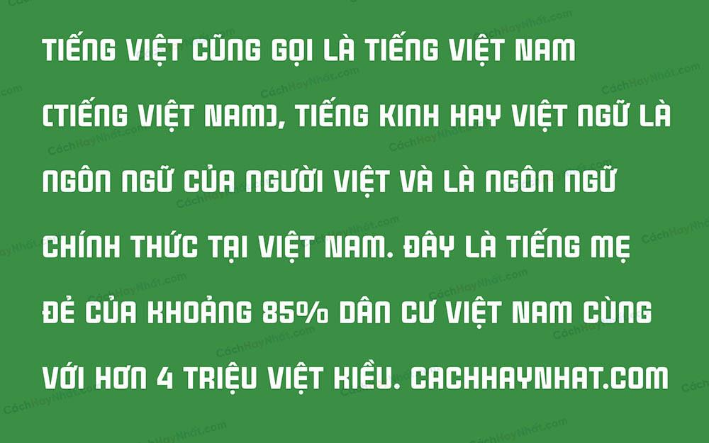 Font SVN-Cintra Việt Hóa