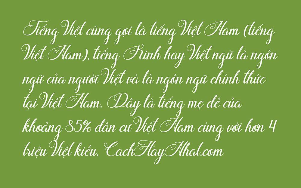 SVN Flamingo Script Việt hóa.