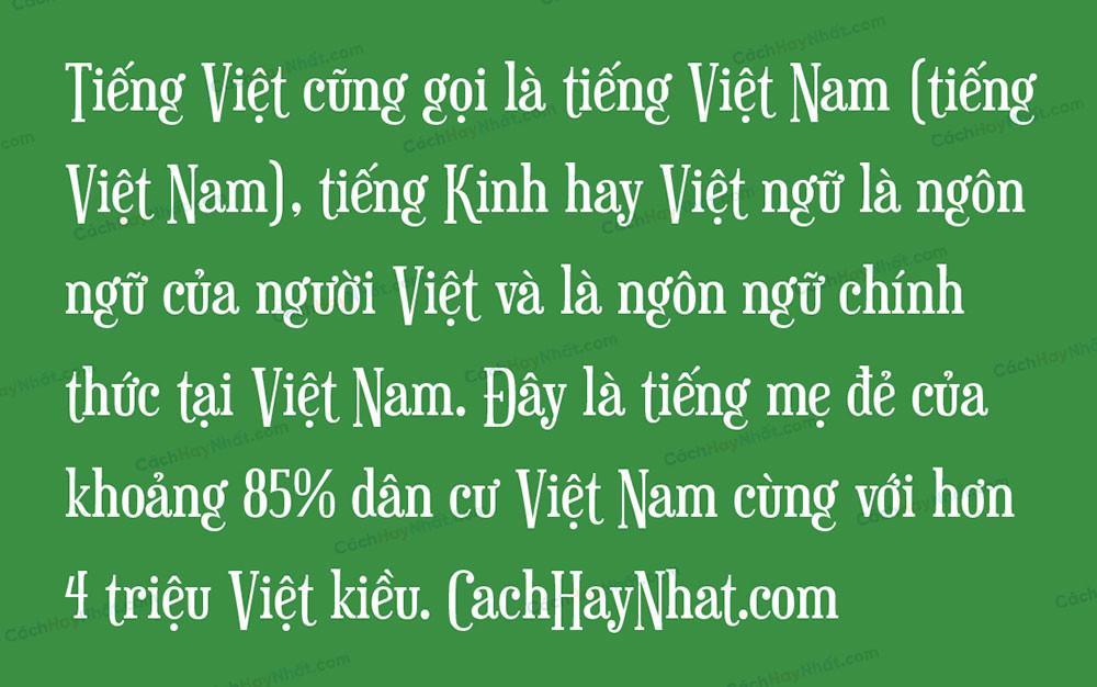 Đoạn văn mô tả Font SVN Euphorigenic Việt Hóa