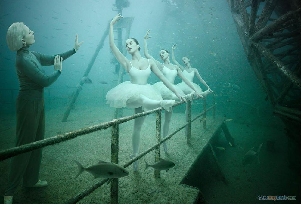 Thao tác chụp ảnh dưới nước của staudinger franke