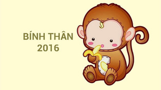 Sinh Năm 2016 Mệnh Gì? Tuổi Bính Thân 2016 Hợp Màu Gì, Hợp Tuổi Nào? Làm Nhà Hướng Nào Tốt?