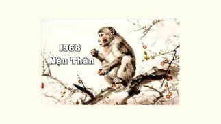Sinh Năm 1968 Mệnh Gì? Tử Vi Cuộc Đời Người Tuổi Mậu Thân, Hợp Màu Gì, Hướng Nào?