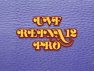 Font Chữ UVF REINA 12 PRO Việt Hóa Free Download