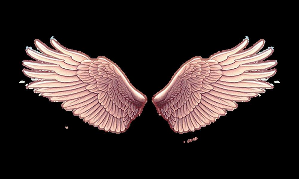 đôi cánh thiên thần