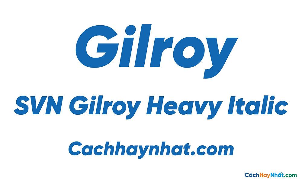 SVN Gilroy Heavy Italic