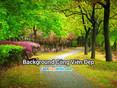 Ảnh Background Đẹp - Download Hình Nền Background Công Viên Đẹp