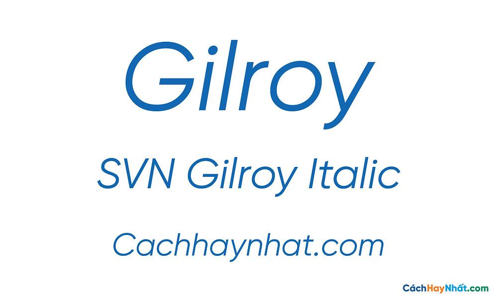 SVN Gilroy Italic