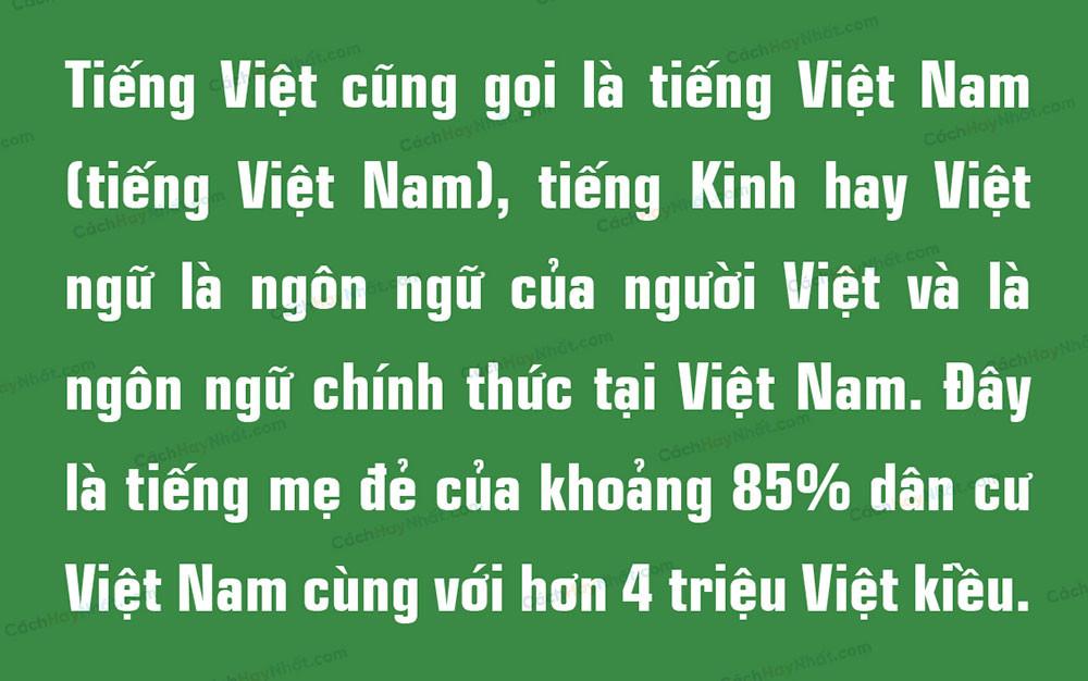 đoạn văn bản bộ font SFU Eurostile Việt hóa