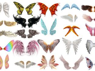 Đôi Cánh Thiên Thần, Cánh Chim, Cánh Bướm PNG PSD Photoshop Tải Miễn Phí