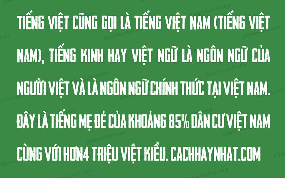 đoạn văn mô tả SVN Headliner No 45 Việt Hóa