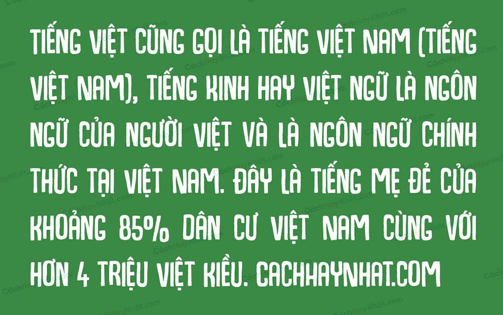 đoạn văn bản mô tả font SVN Hogfish Việt hóa