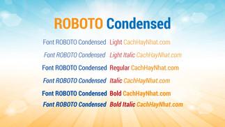 Tải Bộ Font Roboto Condensed Family Việt Hóa