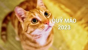 Sinh Năm 2023 Mệnh Gì? Tuổi Quý Mão 2023 Hợp Màu Gì, Hợp Tuổi Nào?