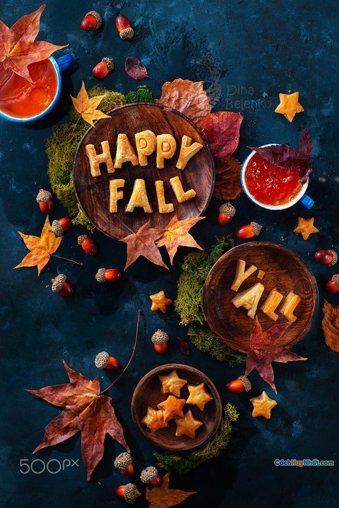 Thực phẩm nghệ thuật quảng cáo ý tưởng chế tác ảnh hạnh phúc mùa thu bởi dina