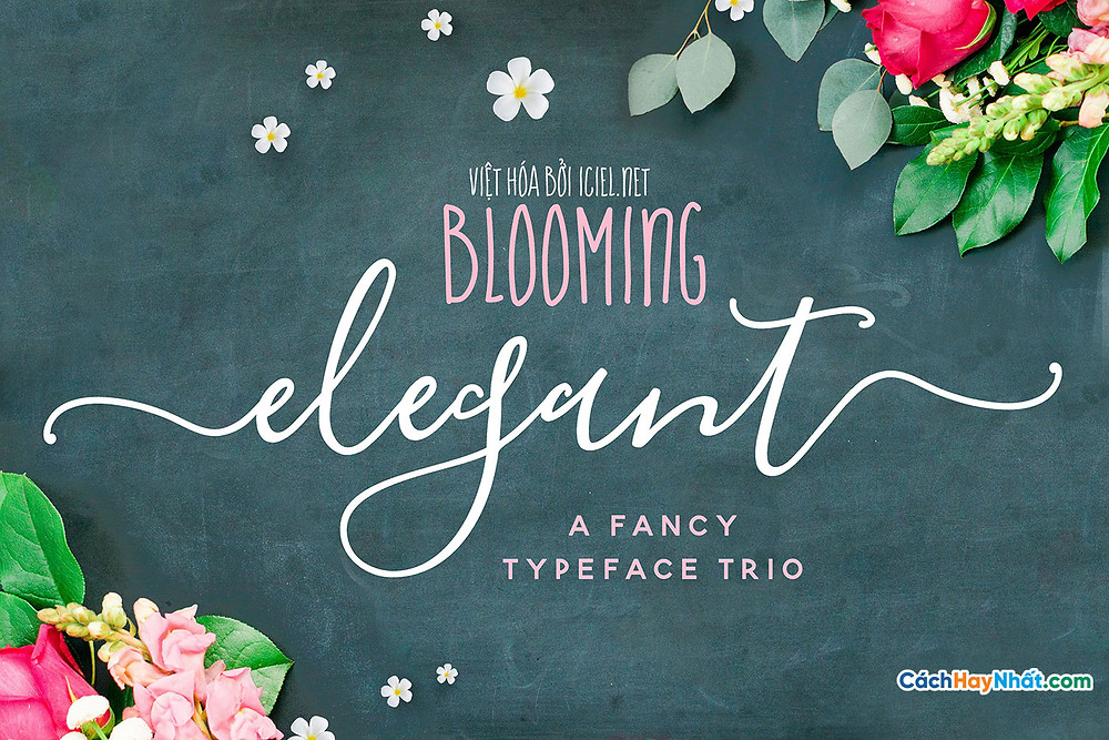Font Chữ iCiel Blooming Elegant Việt hóa