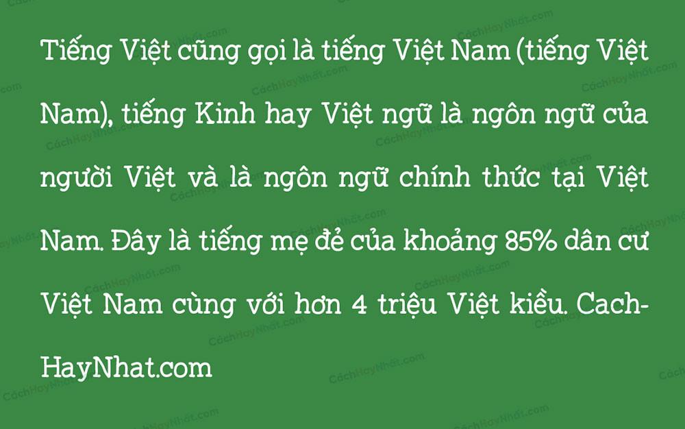 đoạn văn mô tả font SVN Sarifa Việt hóa